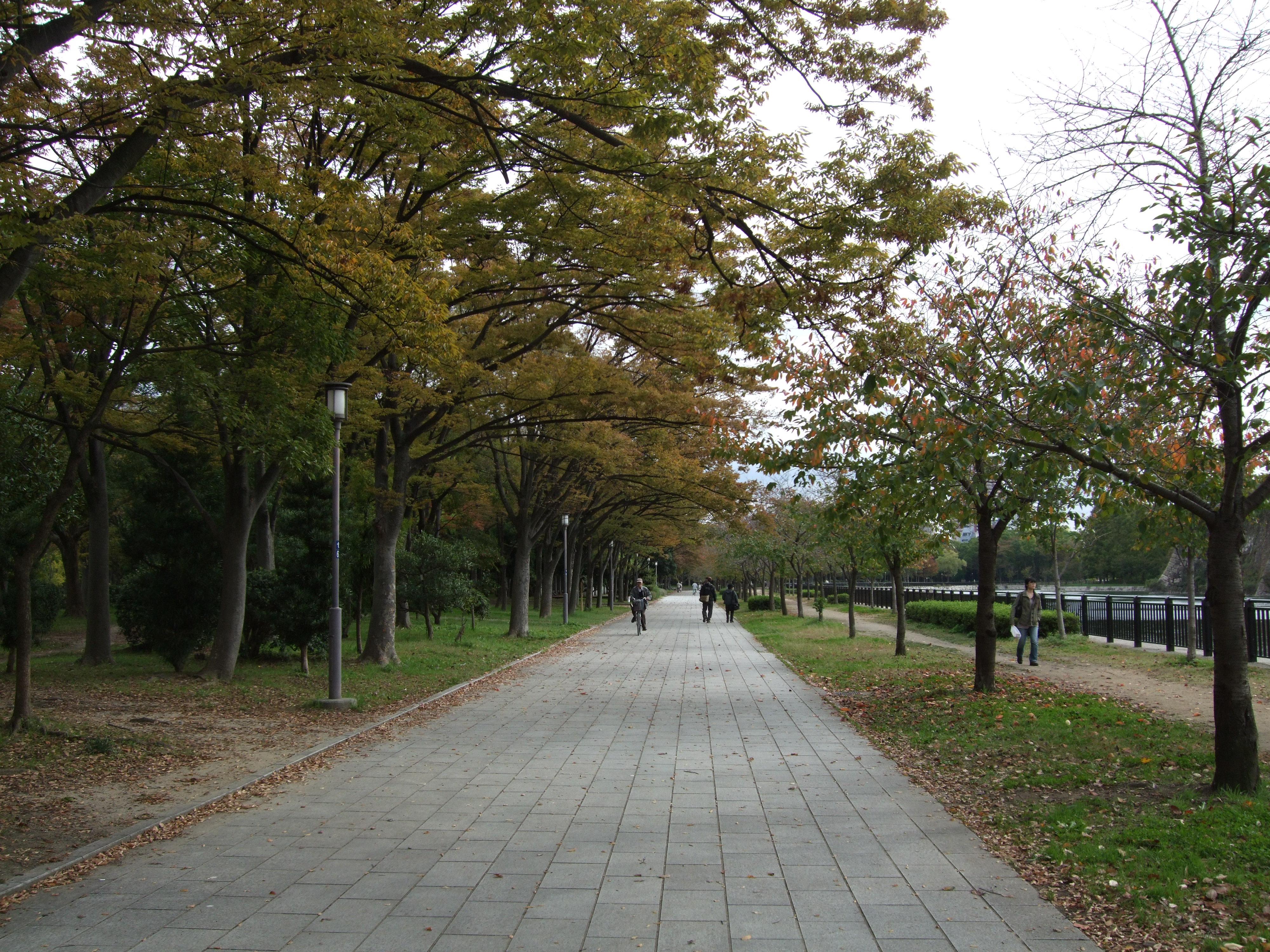 Osakajou kouen - Osakan linnan puisto II