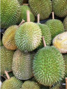 Kokonaisia durio-hedelmiä. Durion hajua/tuoksua on kuvailtu varsin värikkäin sanakääntein, mutta aika herkkänenäistä porukkaa on ollut niitä arviointeja kirjoittamassa. Sanoisin, että tuoksu on samaan aikaan makea ja ammoniakkinen (tyyliin lehmänpissa), aika voimakas.
