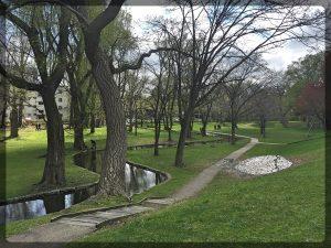 """Se Kuuluista Hokudain Kampuksen Puisto, josta jokaisessa Hokudain mainosbrosyyrissä on kuva, varustettuna kuvatekstillä """"Hokkaidon yliopiston kampus on Japanin kaunein""""."""
